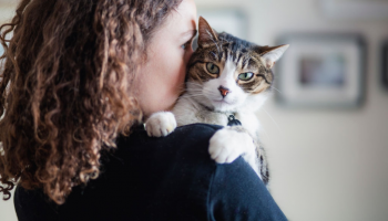 Our Favorite Gifts for Cat Lovers – Purrfect Presents To Give!