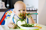Baby Food Makers – Our Recommendations Revealed